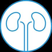 urologia-1