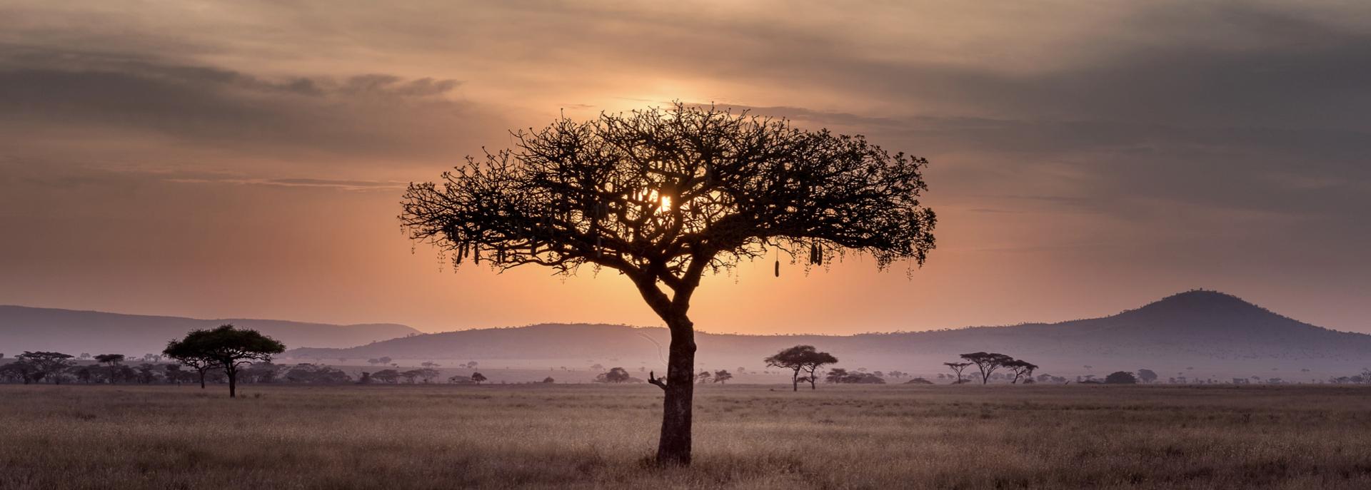 Fra Piergiorgio Romanelli: un sogno solidale per l'Africa