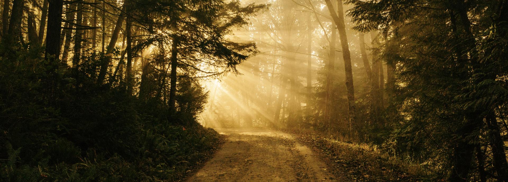 Vocazione religiosa: cos'è e come riconoscerne i segni